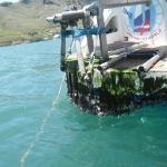 Маркизские острова 4/ Вокруг света на Яхте с ГЛОНАСС