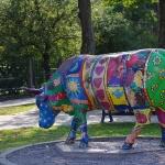 Латвия, Венспилс, смешные коровы