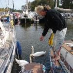 Яхта Дельта в Амстердаме