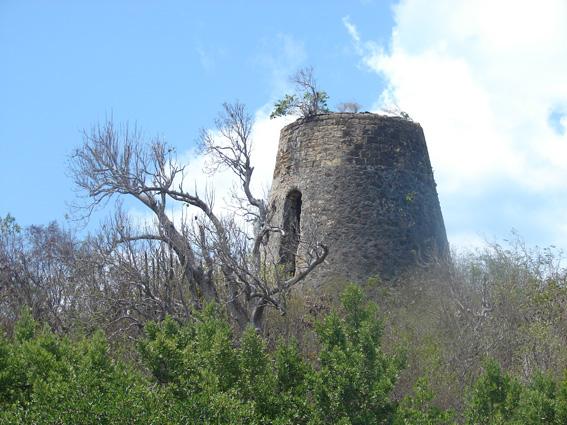 Antigua: GLONASS for Mangrove Swaps