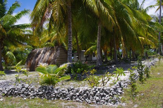 French Polynesia, the Tuamotu Archipelago: Apataki Atoll