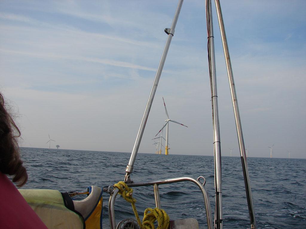 море уставлено ветряками